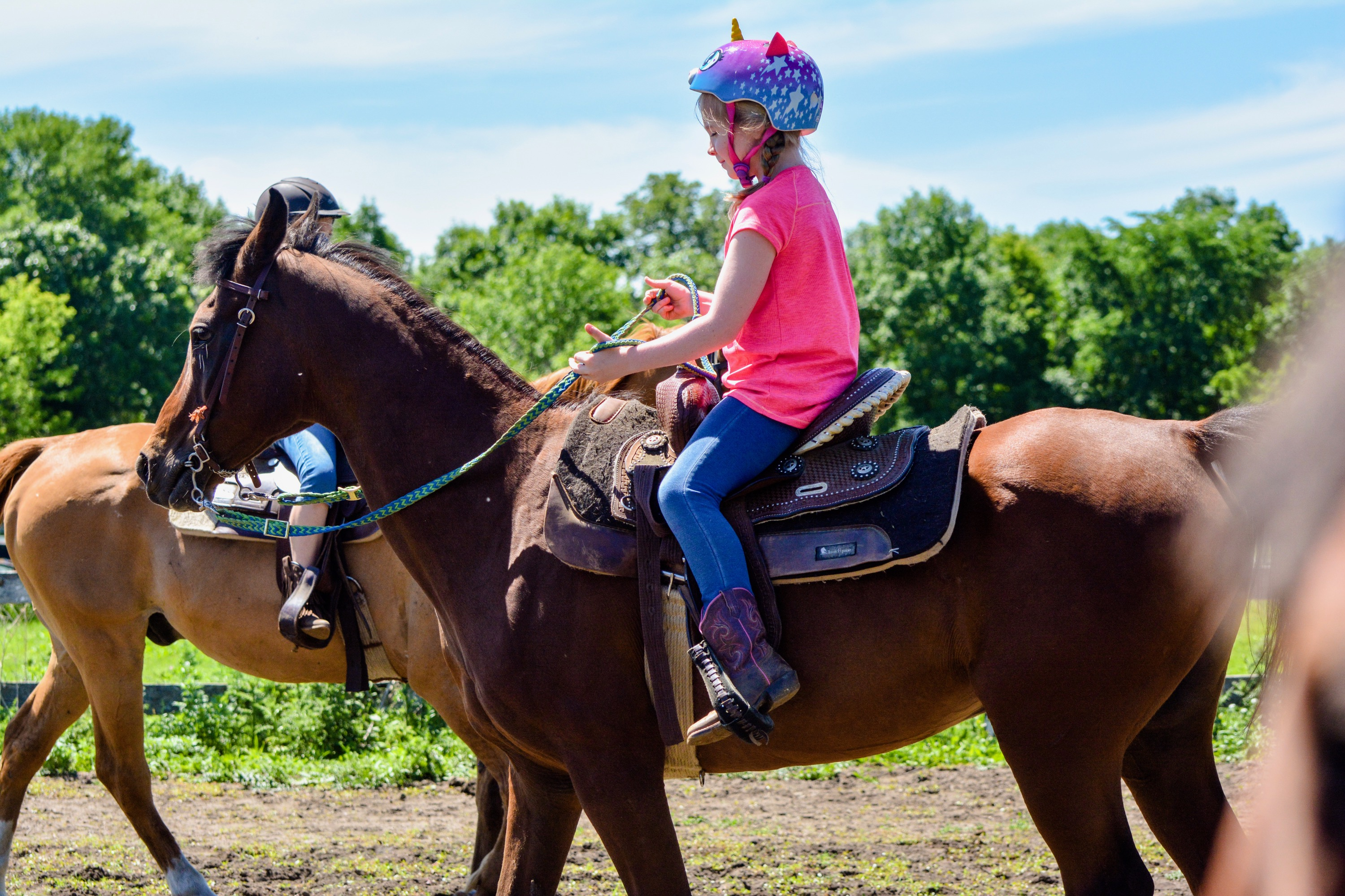 Summer Horse Camp (July 24-27) - Enchanted Hollow Stables